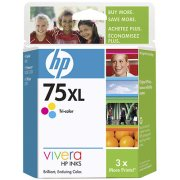 Hewlett Packard HP CB338WN ( HP 75XL ) Discount Ink Cartridge